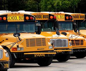Picture of a row of school buses